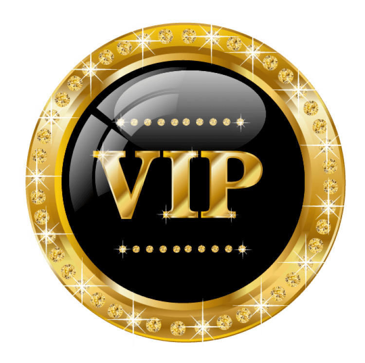 Accès Zone VIP